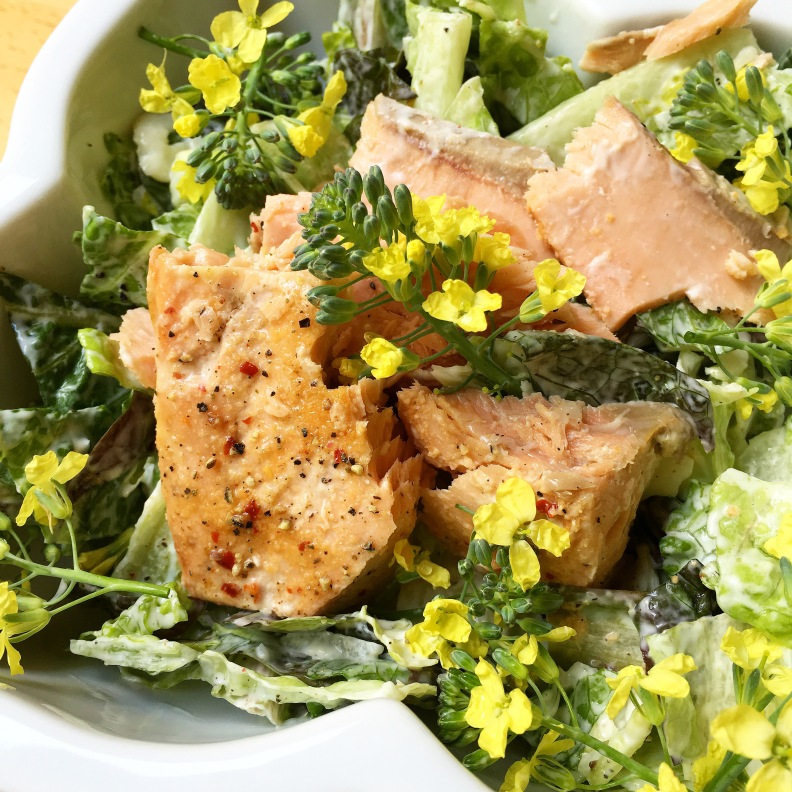 Caesar Salad with Salmon and Broccoli Florets