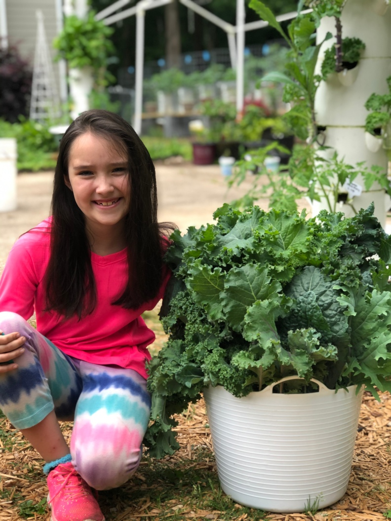 grow your own kale hydroponically using the Tower Garden