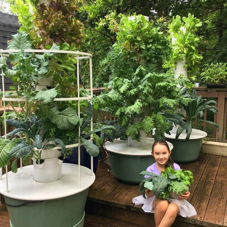 First Tower Garden Harvest
